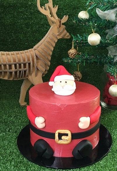 Santa Chubby Cake